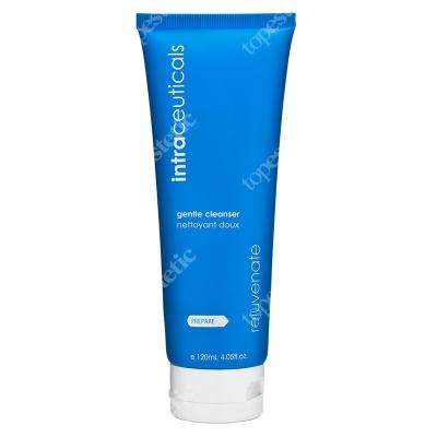 Intraceuticals Gentle Cleanser Płyn oczyszczający 120 ml