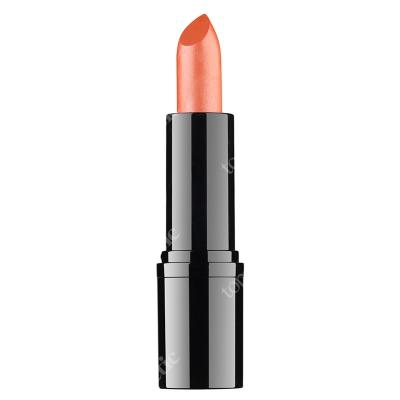 RVB LAB Make Up Professional Lipstick 14 Profesjonalna pomadka (nr 14) 3,5 ml