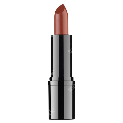 RVB LAB Make Up Professional Lipstick 17 Profesjonalna pomadka (nr 17) 3,5 ml