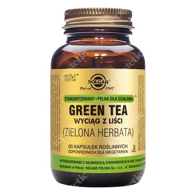 Solgar Zielona Herbata Wyciąg z liści Green Tea 60 kapsułek